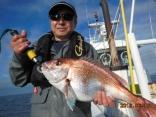 中鯛 2.9kg