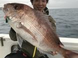 75cm見事な大鯛
