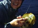 今期初アオリイカ釣りでしたが、しっかりとゲット‼