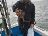 何時もコンスタントに釣りますね。