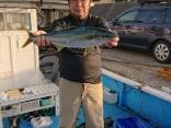 ヒラマサ7本、真鯛50センチまで3枚、グレ35センチ1枚、
