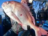 ヒラメ船 大鯛9.2kgヒット!