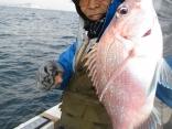 神戸市 吉川さん 良型真鯛40cm!!