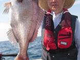 真鯛64cm
