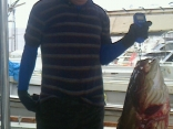 ■7/8(月)スガワさんの釣果は ●アラ11kgを上げました