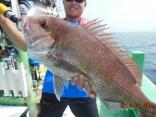 中鯛 3.4kg