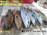 ■7/30(火)佐世保市岡田さん親子●アラ5kg●ヒラマサ7kg
