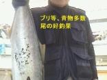 ■9/13(金)守山さんらは●ヒラマサ5kg を頭にブリ等、青物多数尾