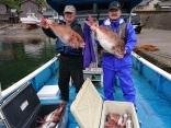 解禁初日の午前便で真鯛72センチまでが、31枚上がりました
