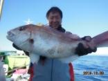 中鯛 3.3kg