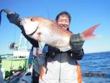 中鯛 2.7kg