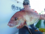 中鯛 3.2kg