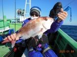 中鯛 2.4kg