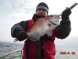 中鯛 1.8kg