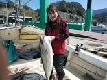 ■3/23(月)伊藤夫妻釣果●ヒラマサ 9kg ●ブリ6kg