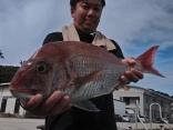 レギュラーサイズ1.5kg~2kgが釣れます。